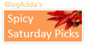 spicy saturday blogs india