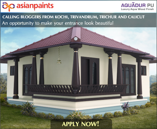 An opportunity to get your door coated with asian paints - Asian paints color shades for exterior ...