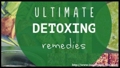 Round up on Post festival detox by I Say Organic